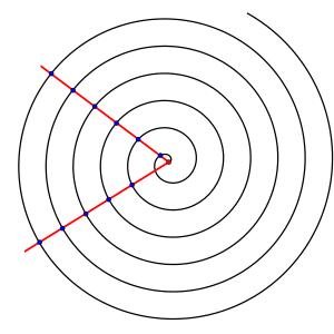 spiralearchimedea